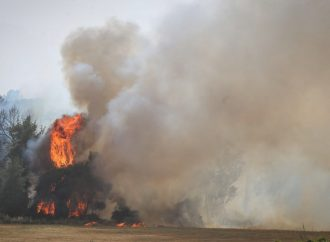 Los incendios consumen bosques emblemáticos para las víctimas del Holocausto cerca de Jerusalem