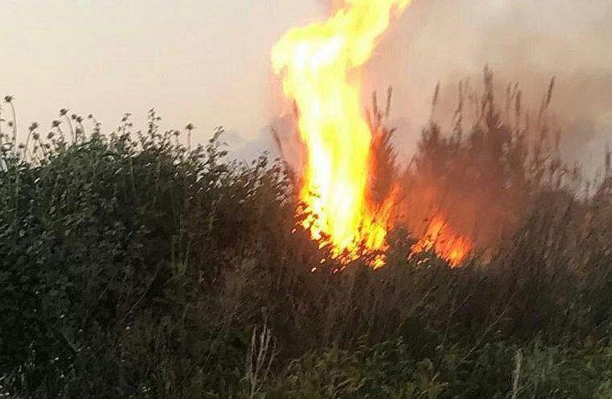 Terror incendiario en Gaza sigue quemando el sur de Israel