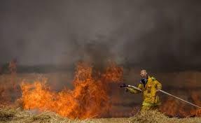 Globos incendiarios lanzados desde Gaza provocan tres incendios