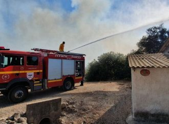 Incendios forestales arrasan el bosque de Carmila