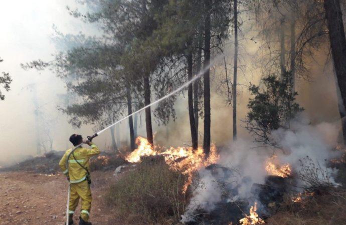 Incendios forestales en todo Israel