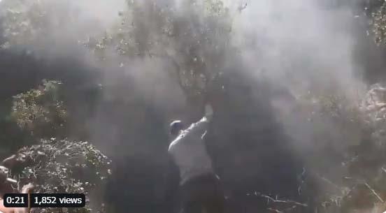 Las FDI bombardearon el sur del Líbano
