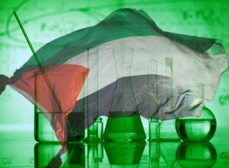 <strong>Palestina.</strong> La existencia de un país inexistente