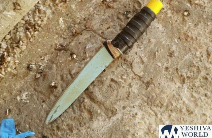 Terrorista femenina baleada en intento de ataque con puñaladas en Majpelá