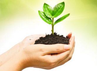 Preparando el suelo fértil para las semillas de la educación