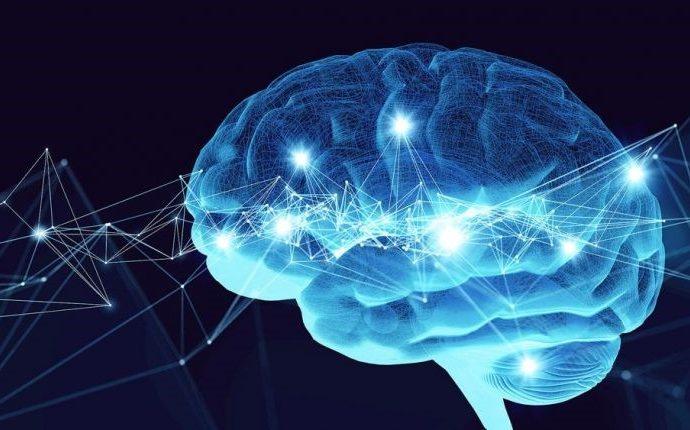 Científicos de Israel revelan nuevos hallazgos sobre el funcionamiento del cerebro