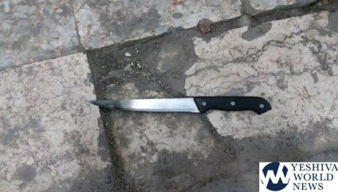 Mujer terrorista armada con un gran cuchillo detenida en la Majpelah