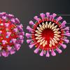 Nueva tecnología podría acelerar el diagnóstico de coronavirus