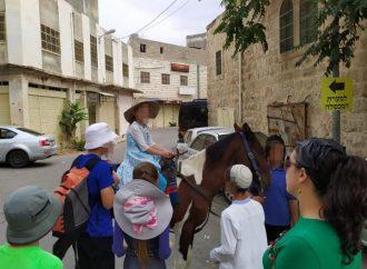 <strong>Medio Oriente.</strong> ¿Por qué los jóvenes europeos no pueden entender a los colonos israelíes?