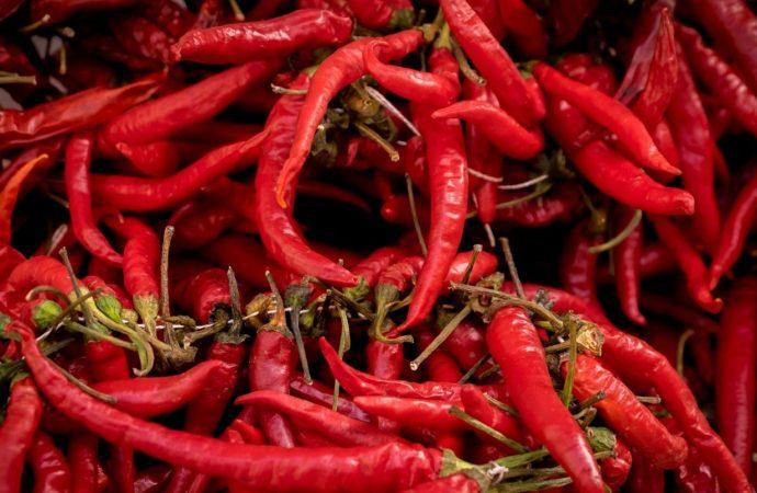 ¿Qué podrían hacer los chiles rojos para el dolor por cáncer?