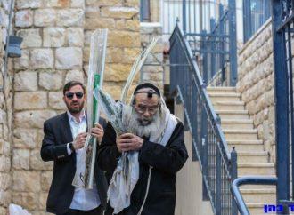 """<strong>Portando los """"Arba Minim"""".</strong> Harav Gross y Harav Gamliel Rabinowitz rezan una plegaria para eliminar la pandemia"""