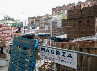 <strong>En Brooklyn, Queens.</strong> Alimentos lácteos distribuidos a los neoyorquinos judíos para Shavuot