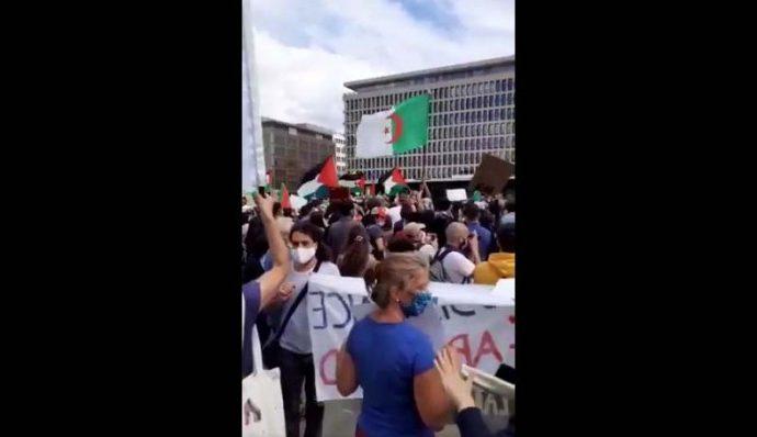 """Manifestantes gritan """"masacrar a los judíos"""" en el mitín de Bruselas"""