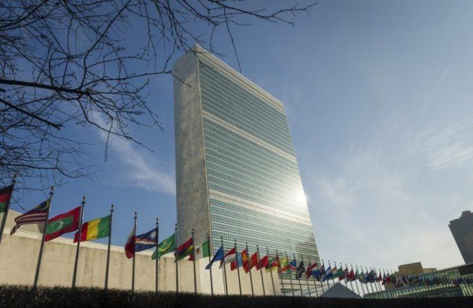 Naciones Unidas: Racismo institucionalizado