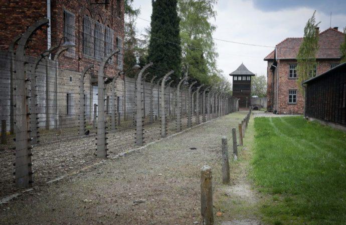 Trabajador del Museo de Auschwitz descubre inscripción de identificación en zapatos para niños