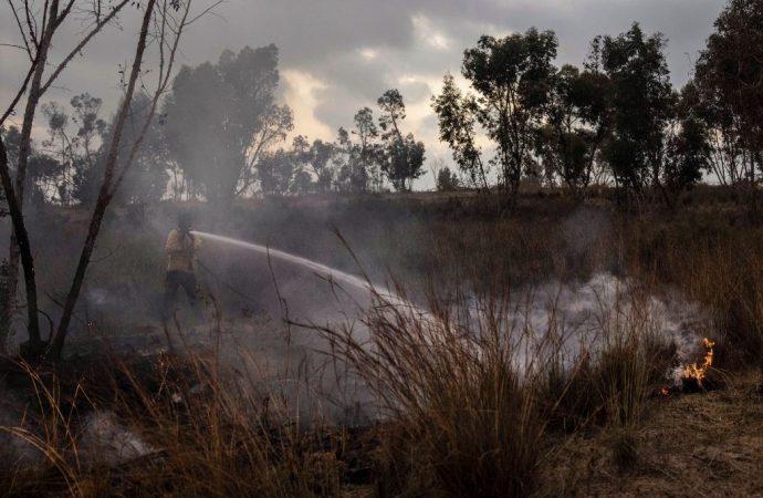 Acuerdo de cesación del fuego en la frontera de Gaza
