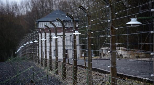 Más de uno de cada 10 estadounidenses menores de 40 años cree que los judíos causaron el Holocausto