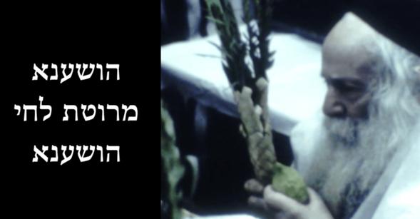 "Escuche las Hoshanot por el santo Sanz Klausenberger Rebbe zt""l en Hoshana Raba 5730"