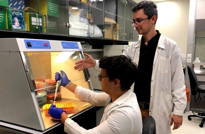 Científicos israelíes son pioneros en métodos de detección de cáncer de mama nuevos y menos invasivos