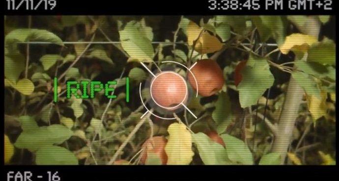 """Un """"robot volador"""" israelí para recoger frutas de los árboles"""