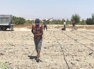 Israel anuncia iniciativa para combatir la ocupación ilegal de tierras estatales en Judea y Samaria