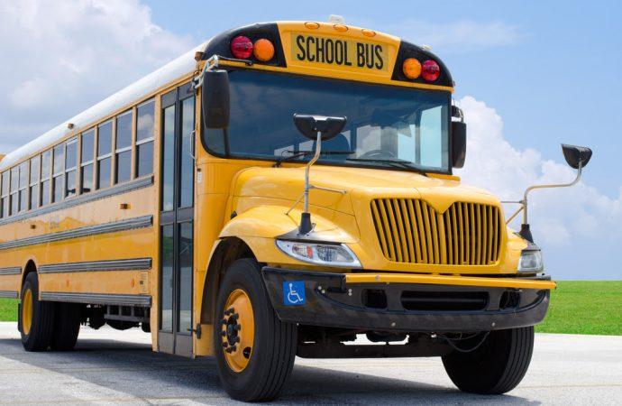 Gran impulso para los autobuses (y otras grandes victorias)
