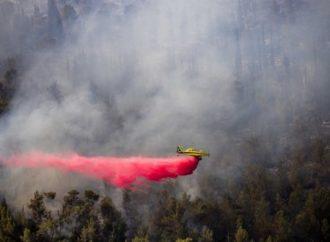 Incendios en erupción en todo Israel, sospecha de acción premeditada (videos)