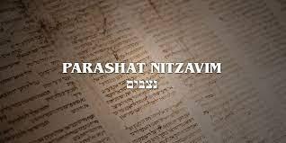 Podcast: Audios de Parashá Nitzavim