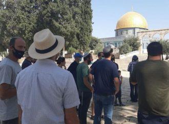 Ministro de Seguridad Pública: No hay oración judía en el Monte del Templo