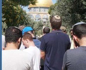 Bombazo: Tribunal de Jerusalem aprueba la oración judía en el Monte del Templo